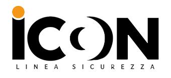 ICON SNC